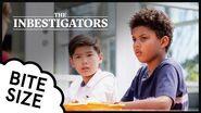 The Inbestigators 🔎 Bite Size 🥕 31