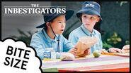 The Inbestigators 🔎 Bite Size 🎒 58