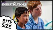 The Inbestigators 🔎 Bite Size 🍇 40