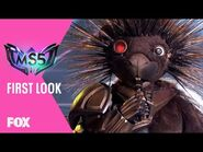 First Look- Season 5 - THE MASKED SINGER