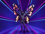Butterfly (UK)