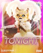 Kitty Promo