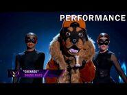 """Rottweiler sings """"Grenade"""" by Bruno Mars - THE MASKED SINGER - SEASON 2"""