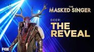 The Deer Is Revealed Season 1 Ep
