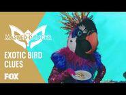The Clues- Exotic Bird - Season 1 Ep