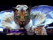 """Leopard sings """"We Are Young"""" by Fun"""