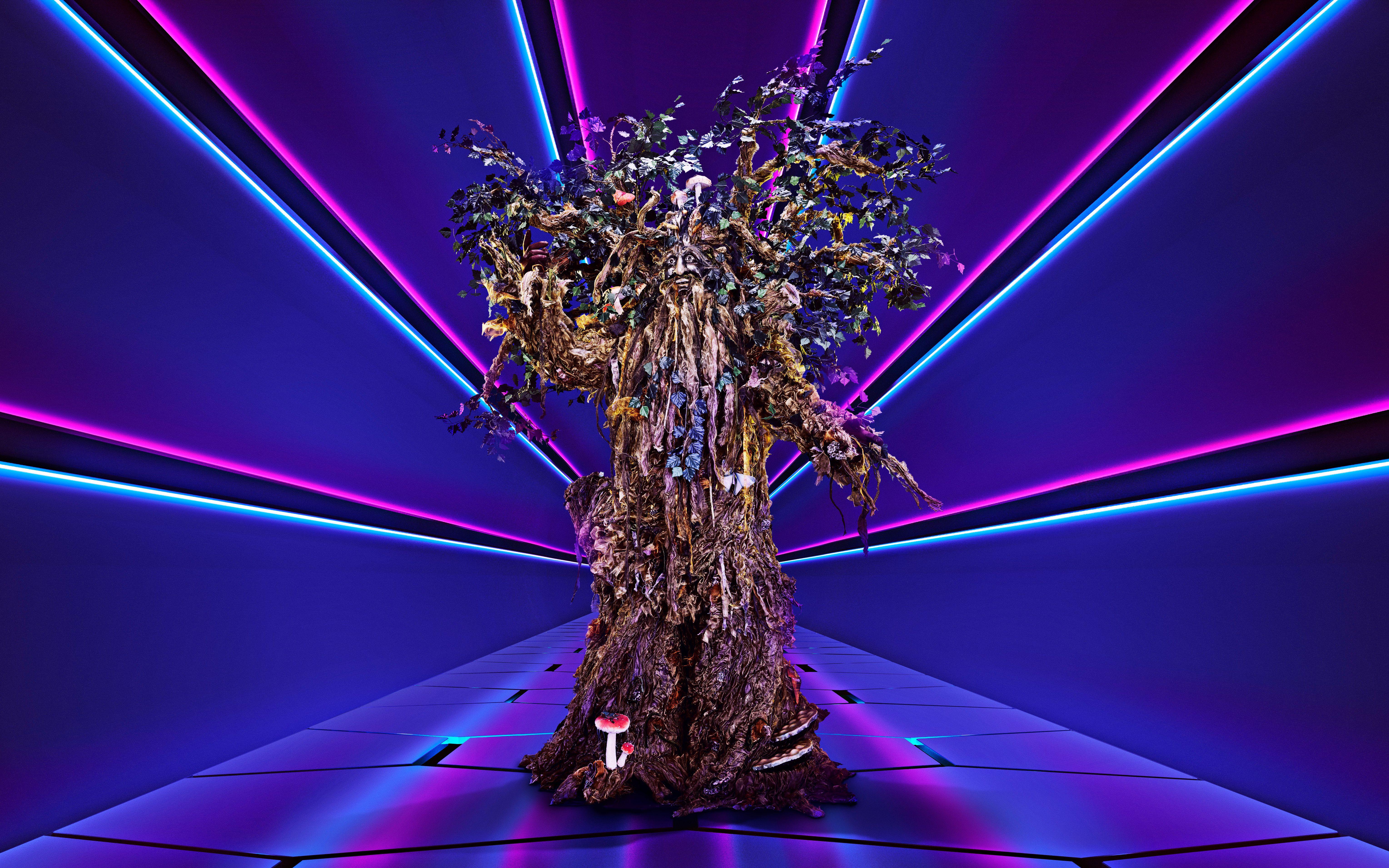 Tree (UK)