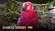 The Clues Flamingo Season 2 Ep