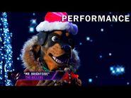 """Rottweiler sings """"Mr"""