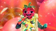 Taco singer