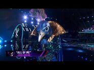 "Peacock sings ""All Of Me"" by John Legend - THE MASKED SINGER - SEASON 1"