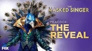 The Peacock Is Revealed Season 1 Ep