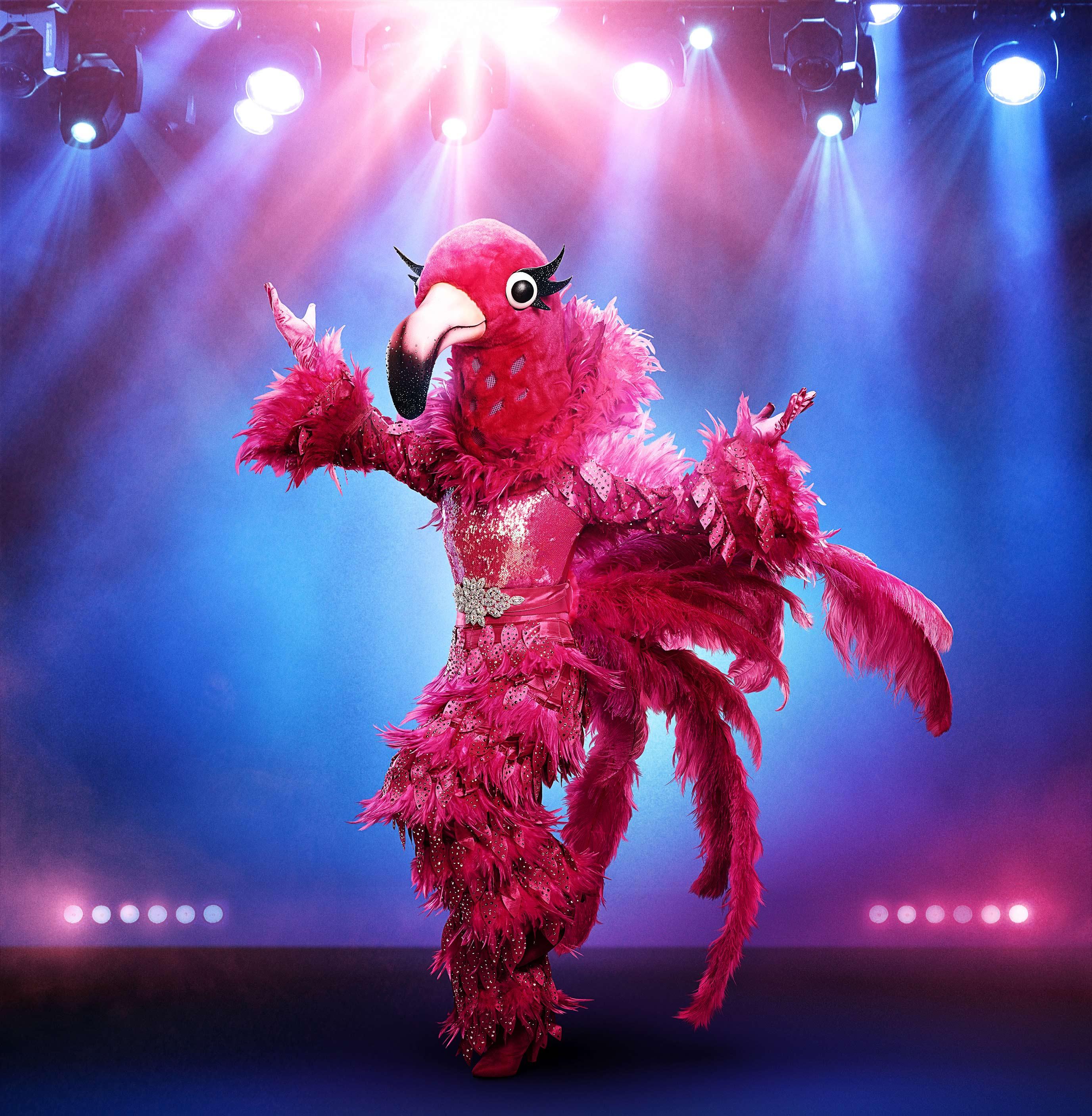Flamingo The Masked Singer Wiki Fandom