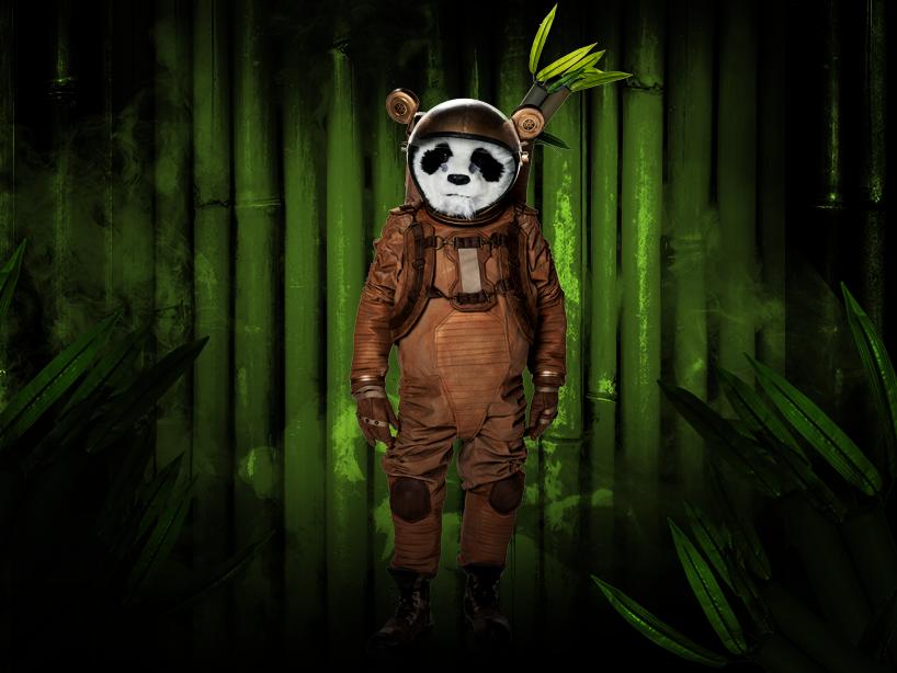 Panda (MX)