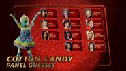 Cotton Candy's panel guesses