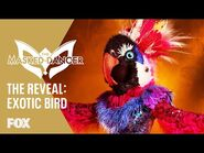 The Exotic Bird Is Revealed - Season 1 Ep