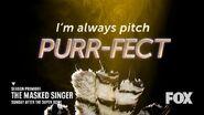 Purr-fect