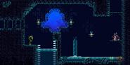 Sunken Shrine 16-Bit Room 23