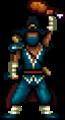 Pilgrim Ninja