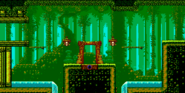 Bamboo Creek 8-Bit Room 18