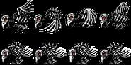 Birdy 8