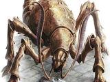 Roaches, Roaches, Roaches