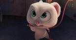 I Said, Don't Call Me Cute!