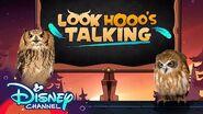 Episode 1 Look Hooo's Talking The Owl House Disney Channel