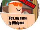 Widgeon