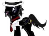 Blackbird26155