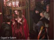 Caged in Salem bird's nest
