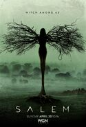 SALEM-S1-Poster-Witch-Tree