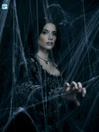 S3 Mary Sibley spiderweb promotional