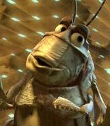 Molt-a-bugs-life-67.2