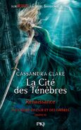 QoAaD cover, French 04