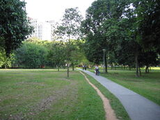 The unnamed park next to the Bugis MRT station where the half of Johore Road south-west of Ophir Road used to be.