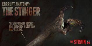Corrupt-Anatomy-The-Stinger-the-strain-fx-38617383-1024-512.jpg