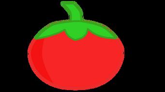 Tomato bodie