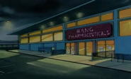 Bangpharmaceuticals2