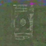 Rosemary Missing Poster Bright