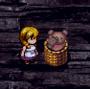 Bears in the basket