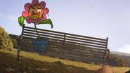 The flower 14