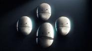 The Potato - 12