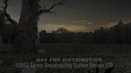 GB211TREASURE Sc179 OldTree Flashlight Layout