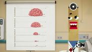 The Brain (12)
