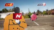 TheNews13