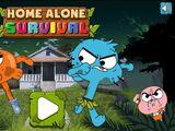 Home Alone Survival