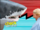 Shark Fighter