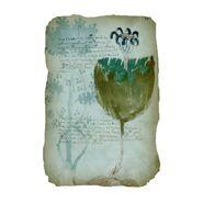Página del Mianuscrito Voynich02