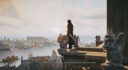 Arno sobre Notre-Dame
